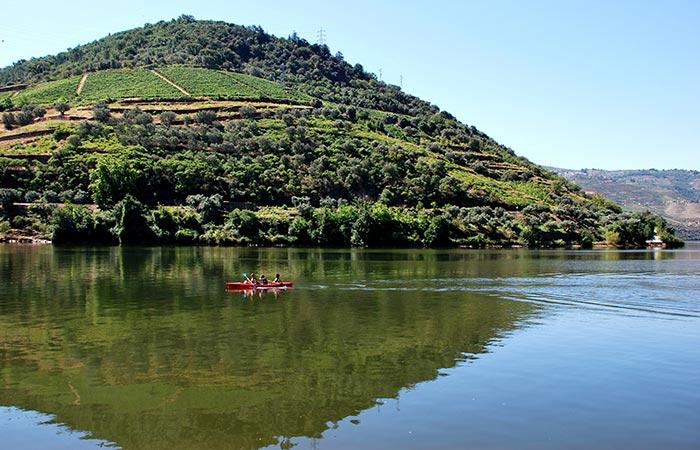 Oporto & Douro Moments